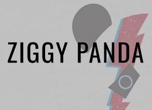 Rubrique : Ziggy Panda