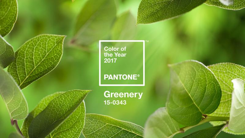 La couleur Pantone de l'année 2017 'Greenery'
