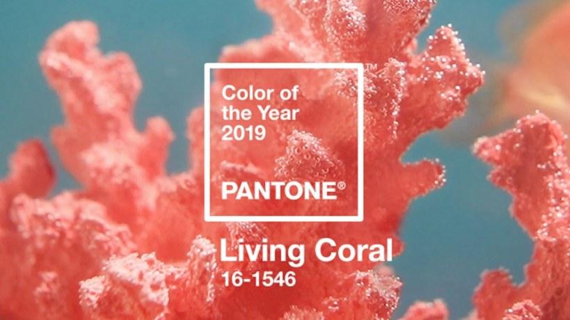 Recettes de cuisine couleur corail comme la couleur Pantone de l'année 2019 'Living Coral'